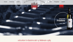 Homepage sito